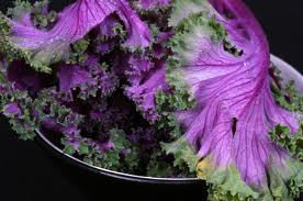 Purple Kale - Beautiful & Delicious!