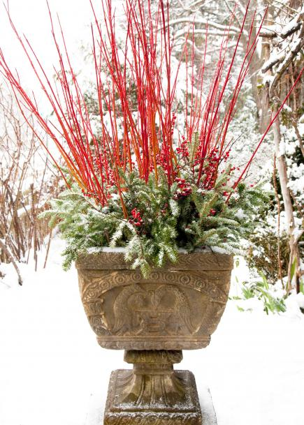 Winter Container Garden Ideas Containers