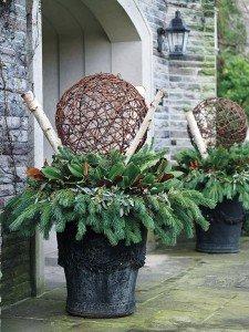 Winter Planter Ideas