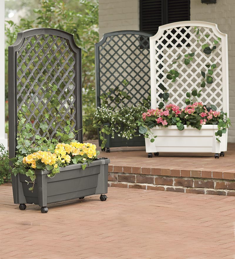 Lattice Rail Flower Box Is A Superb Addition To Decks: Best Gifts For Gardeners