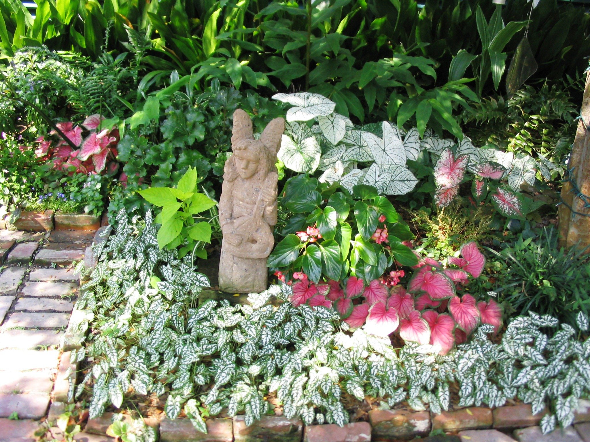 Plants for shady areas for Flowers for shade gardens