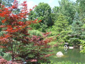 FlowerChick, Japanese gardens, Rockford