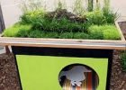A Green Roof Doghouse by FlowerChick.com