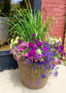Flower Chick's Container Gardening Tips