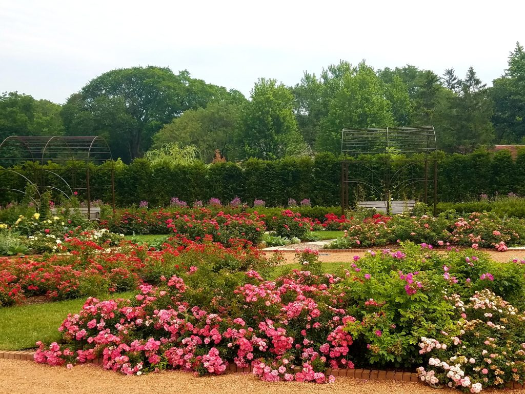 Cantigny Park Gardens Wheaton IL by Flower Chick
