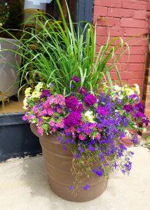 Container Garden Ottawa IL by Flower Chick