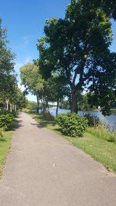 Ottawa IL Riverwalk FlowerChick.com