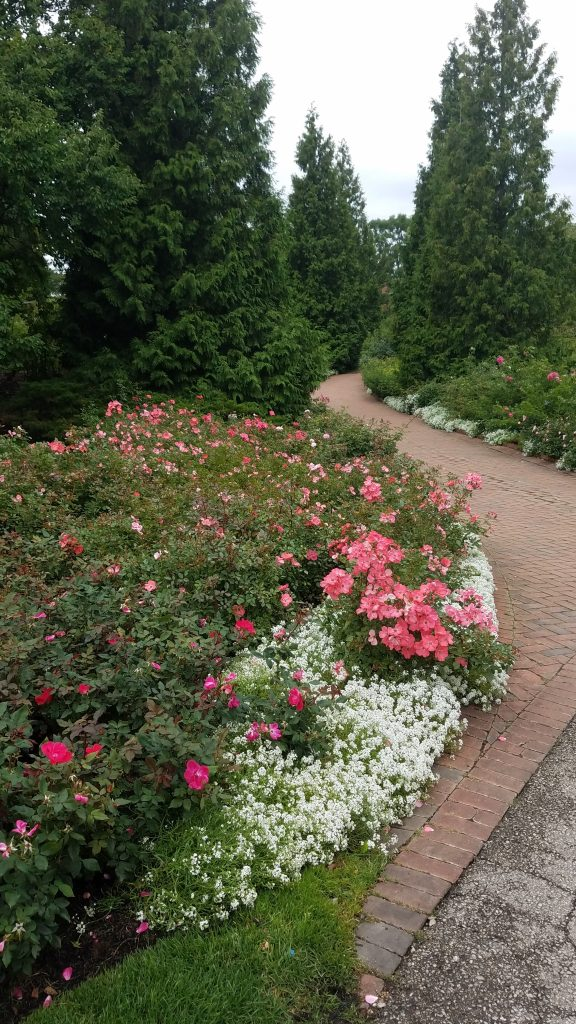 Chicago Botanic Garden by Flowerchick.com