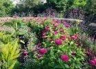 Boerner Botanical Garden Wisconsin by FlowerChick.com