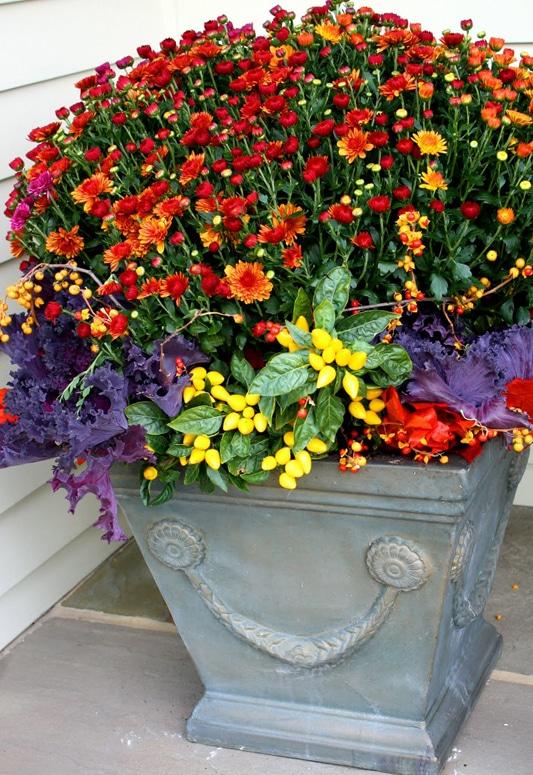 Fall Container Garden by FlowerChick.com