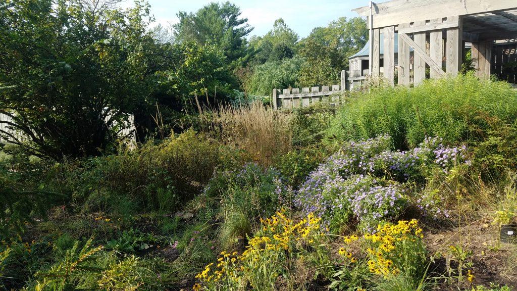 Fernwood Botanic Gardens by FlowerChick.com