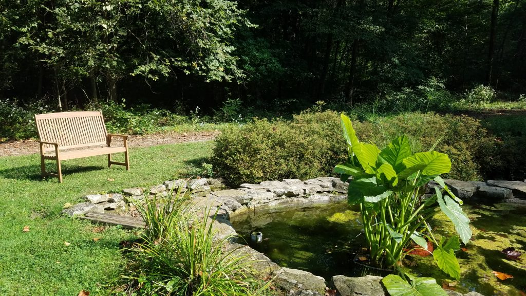 Fernwood Botanic Garden Niles MI by FlowerChick.com