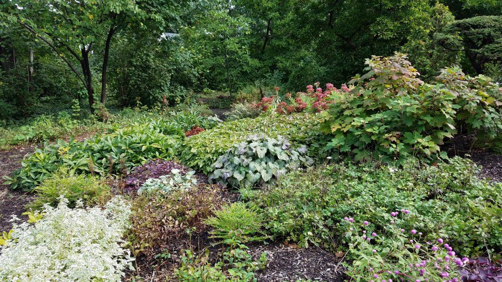 Perennial Garden at Luthy Botanical Garden in Peoria by FlowerChick.com