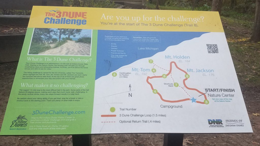 Dune Challenge at Indiana Dunes Park by FlowerChick.comState