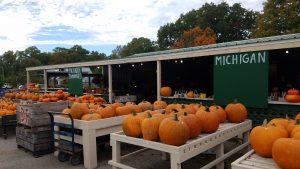 Farmstand in New Buffalo MI by FlowerChick.com