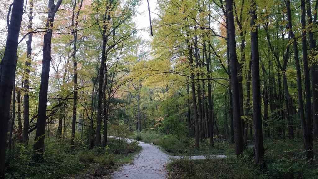Trails on the Brincka Cross Gardens property by FlowerChick.com