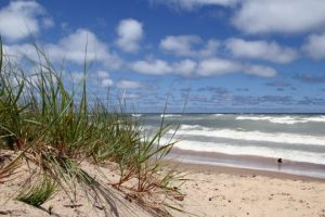 Indiana Dunes National Park by FlowerChick.com