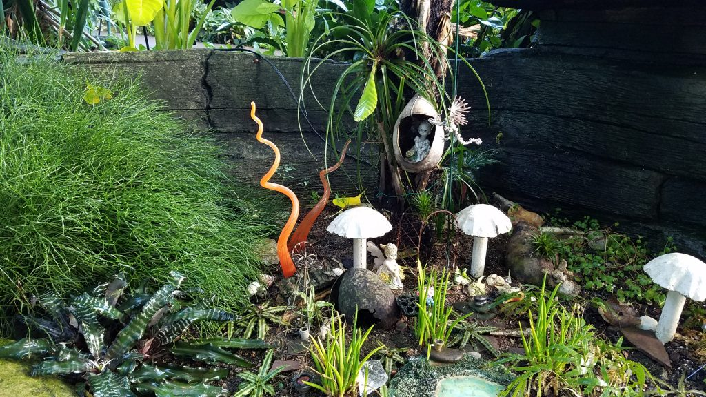 Fairy Garden in the Tropical Dome in Milwaukee by FlowerChick.con