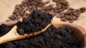 Coffee Grounds as Fertilizer