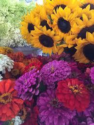 Sunflowers and Zinnias by FlowerChick.com
