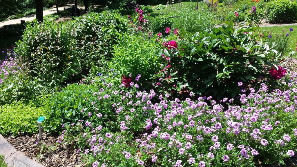 Dubuque Botanical Garden by FlowerChick.com