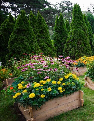 Farmstead raised garden beds by FlowerChick.com