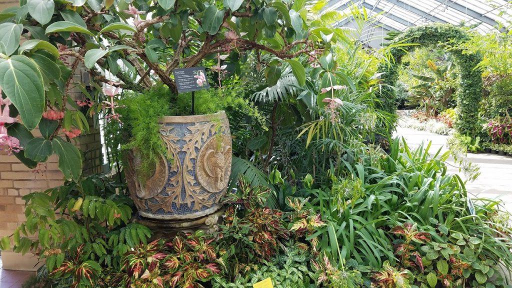 Conservatory at Vander Veer Park by FlowerChick.com