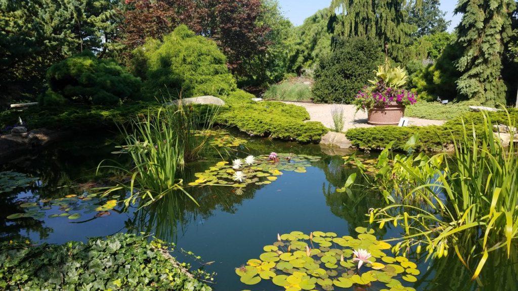 Quad Cities Gardens: Visit These 8 Scenic Gems
