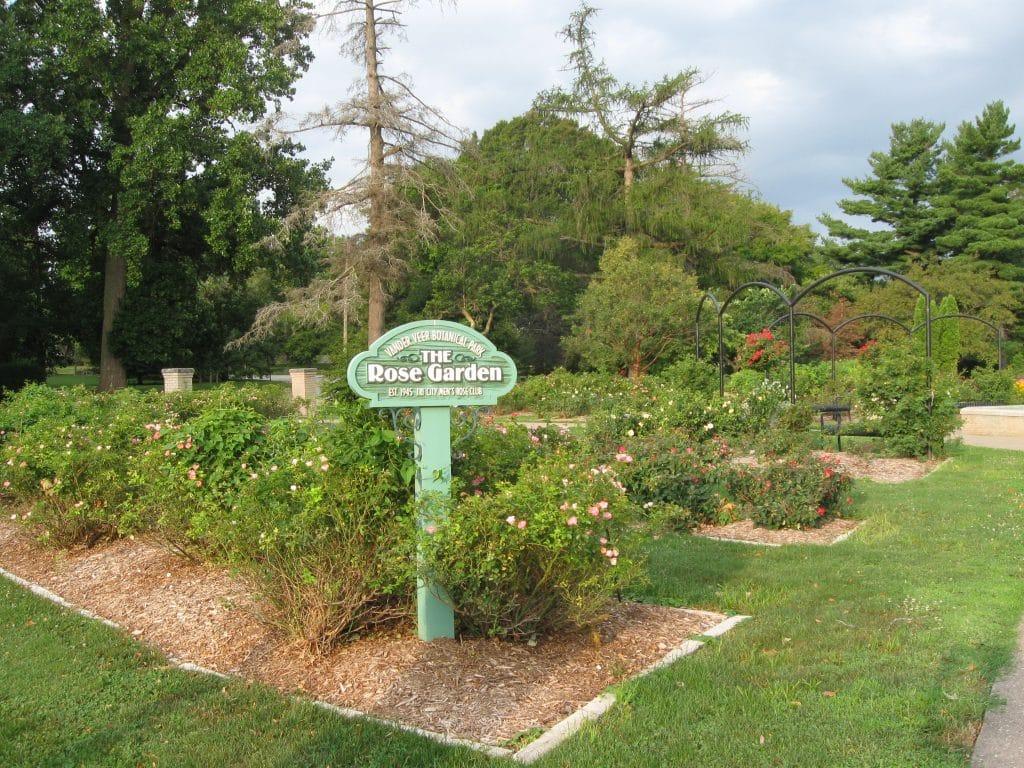 The Rose Garden at Vander Veer Park by Flowerchick.com