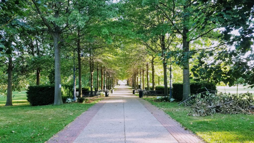 The Grand Allee At VanderVeer Botanical Park