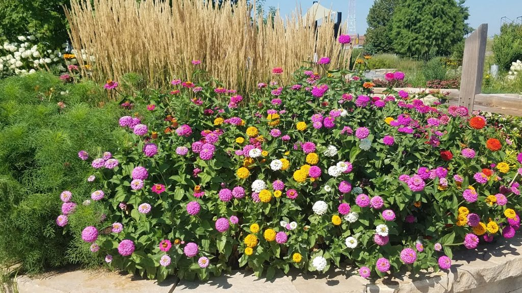 Quad Cities Gardens by FlowerChick.com
