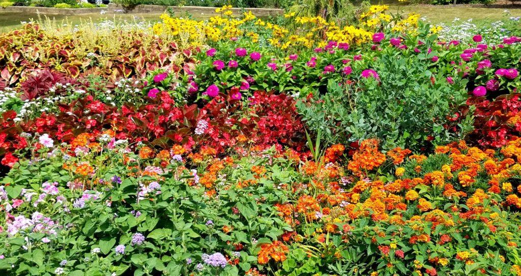Ogden Gardens Park Valparaiso by FlowerChick.com