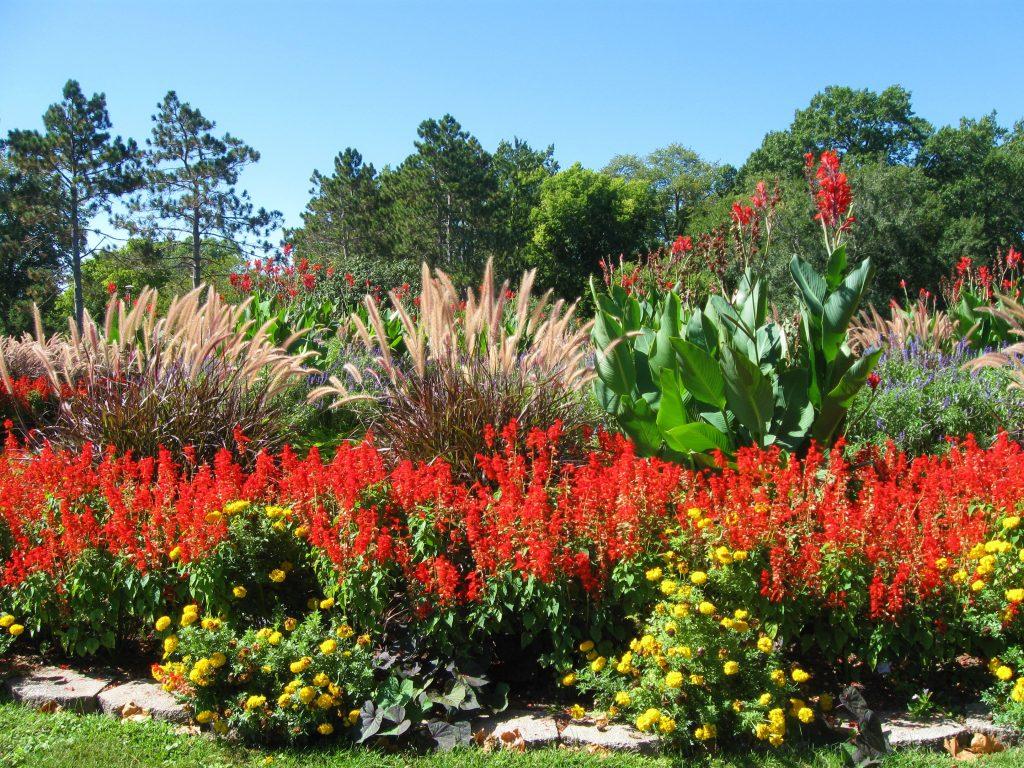 Washington Park Gardens Springfield IL by FlowerChick.com