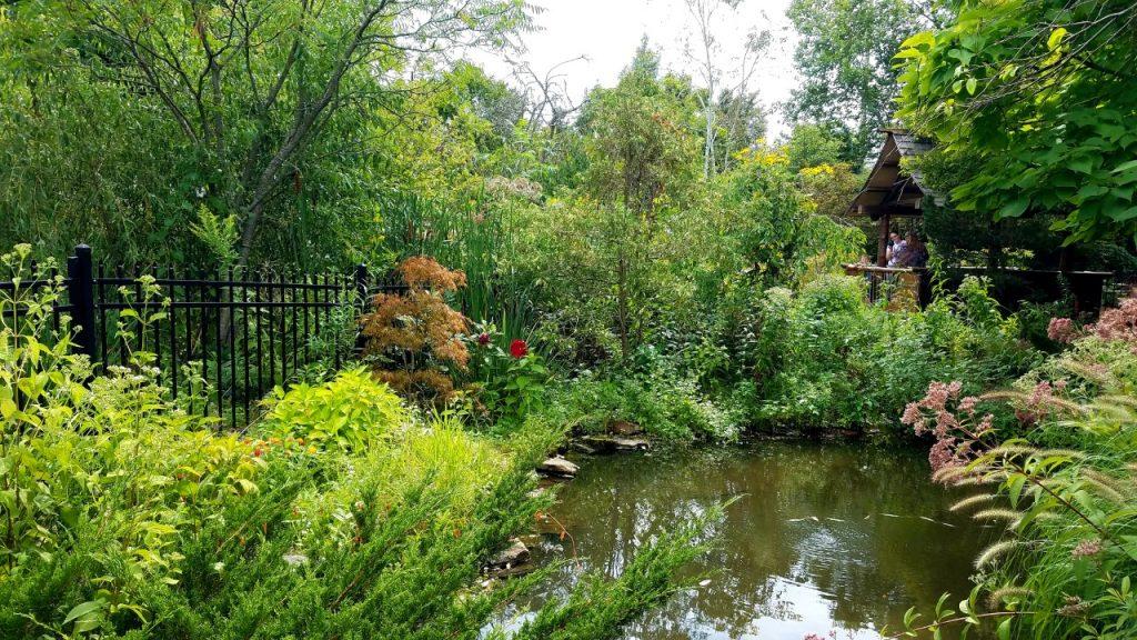Ogden Gardens Park Japanese Garden by FlowerChick.com