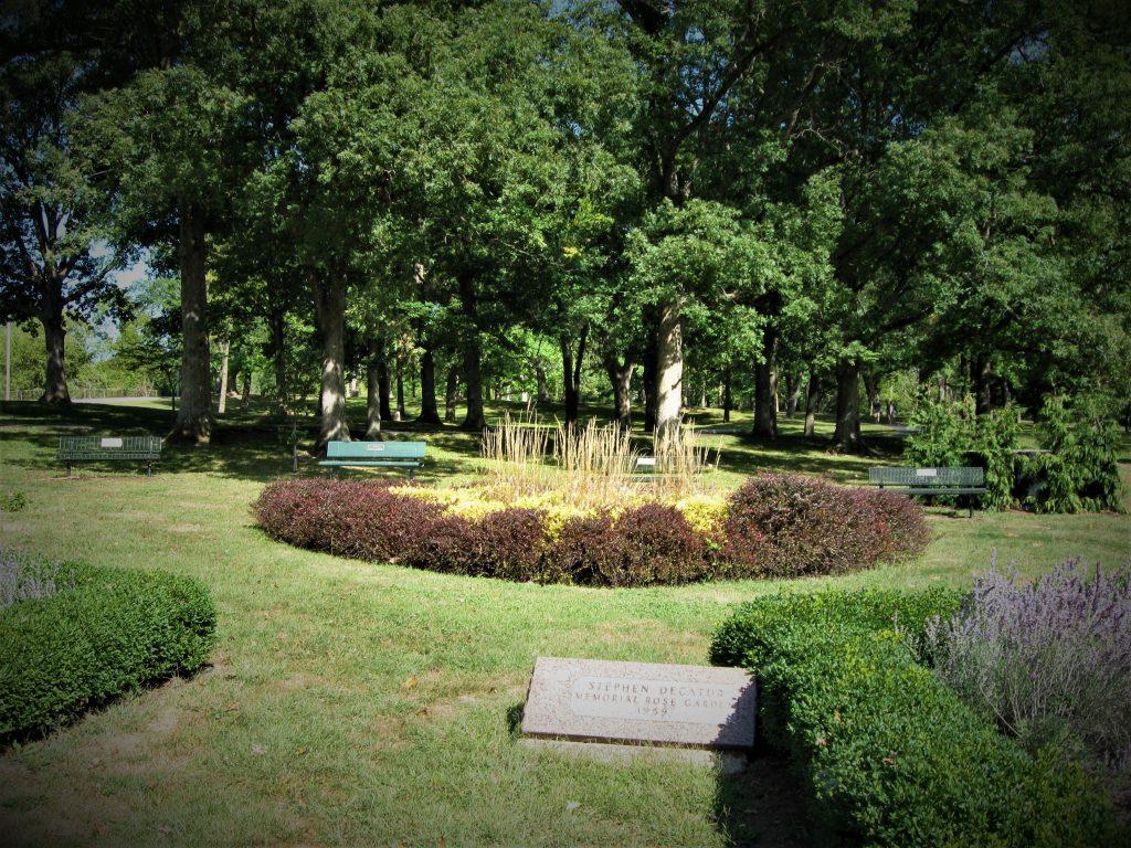 Fairview Park Rose Garden in Decatur by FlowerChick.com