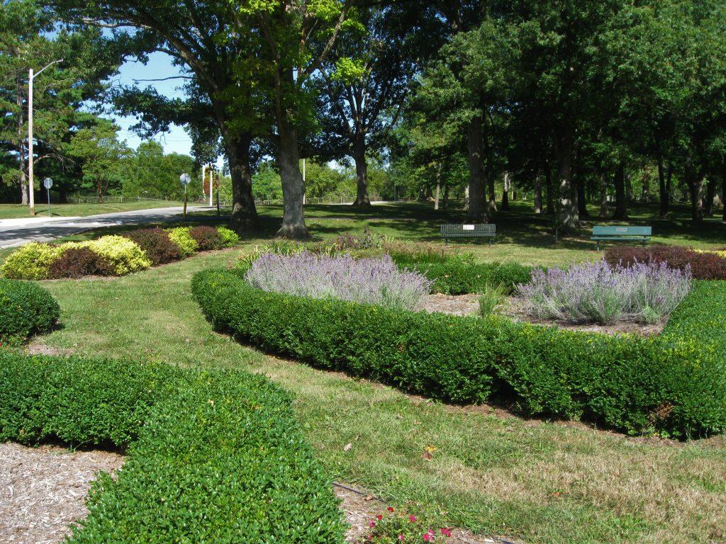 Rose Garden Decatur Park District by FlowerChick.com