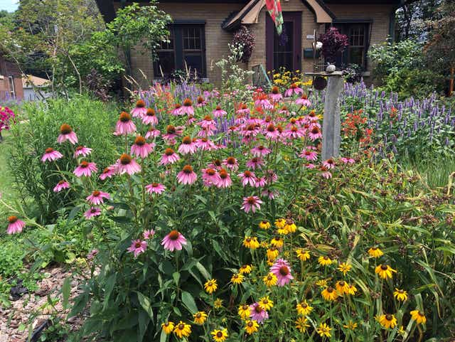 Benefits of Using Native Plants by FlowerChick.com