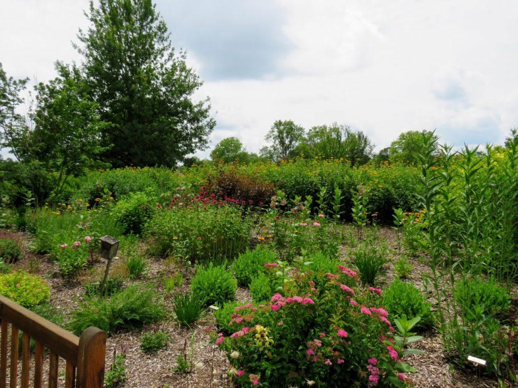 Butterfly Garden at Iowa Arboretum by FlowerChick.com