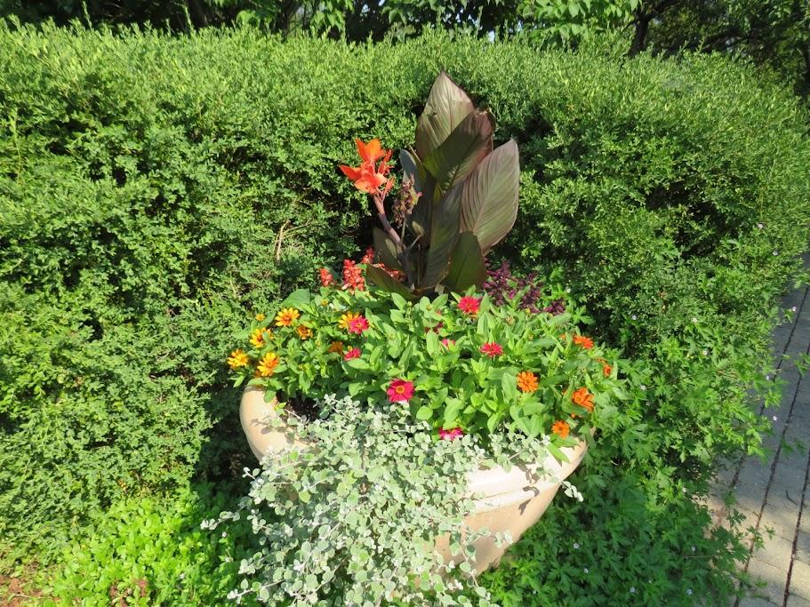Lake Geneva Area Gardens by Flower Chick