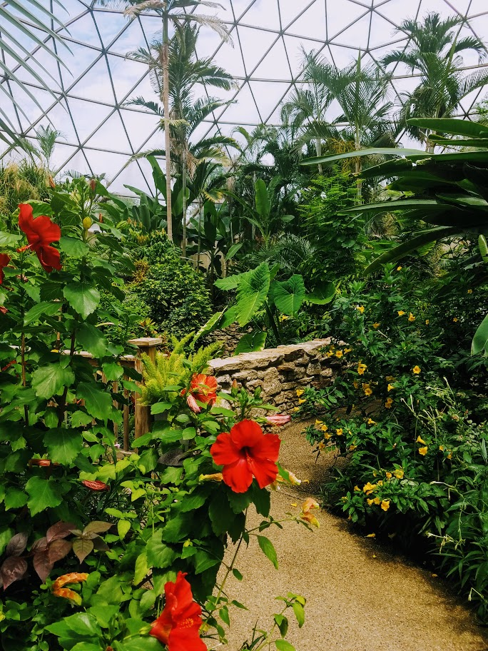 Conservatory at Greater Des Moines Botanic Garden