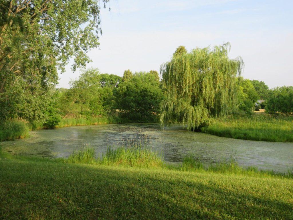 Gerk Arboretum by FlowerChick.com