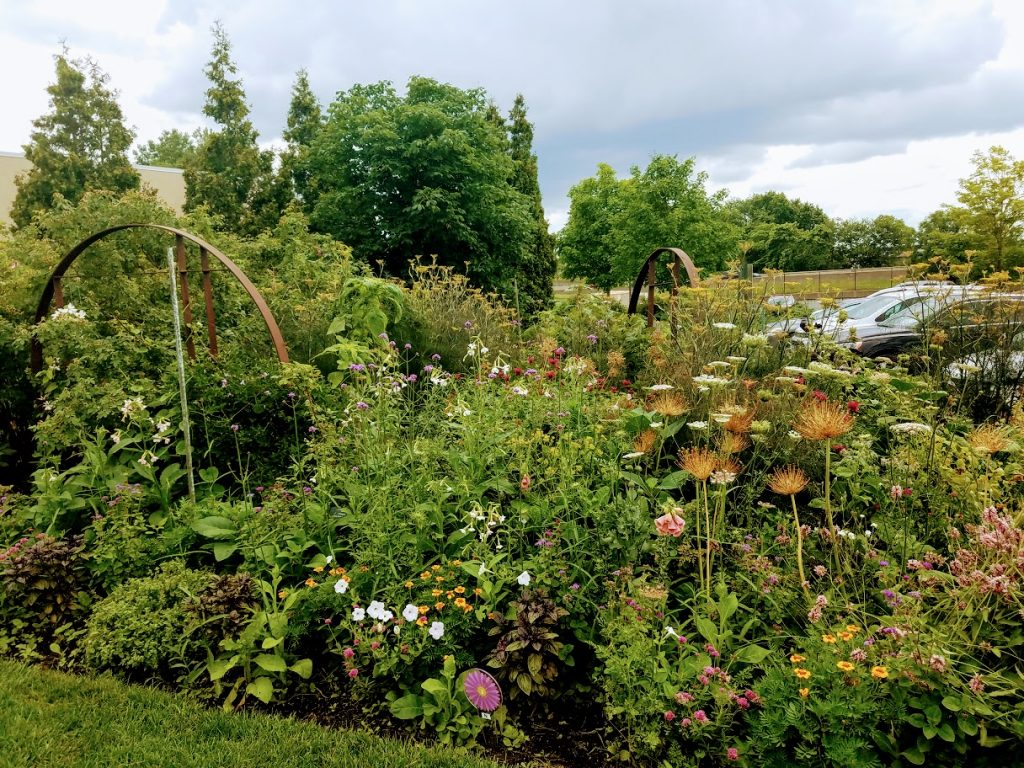 Mixed Rose Garden at Greater Des Moines Botanic Garden by FlowerChick.com