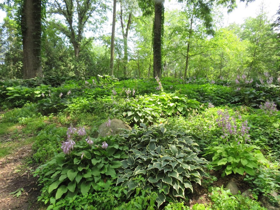 Lake Geneva Area Gardens By FlowerChick.com