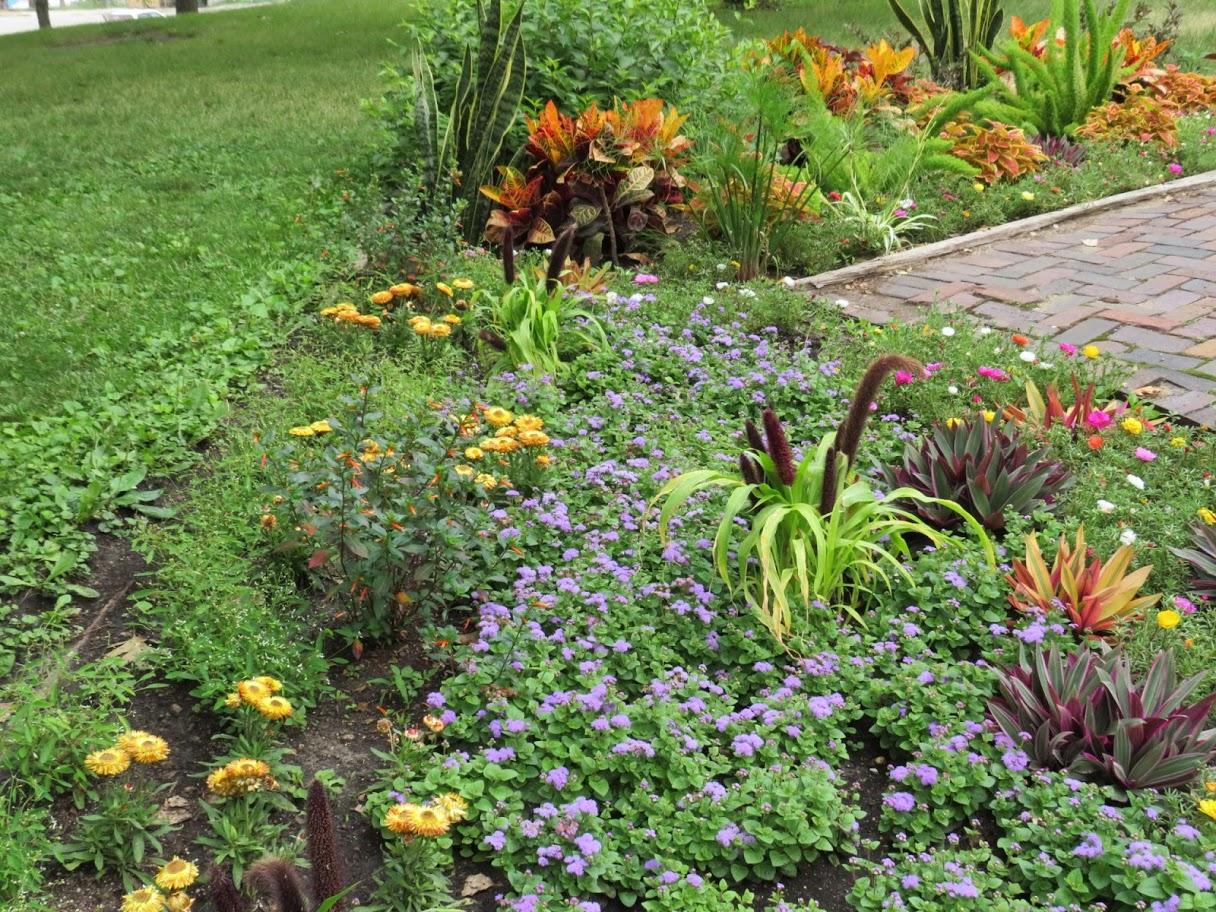 Union Park Flower Bed Des Moines Iowa by FlowerChick.com