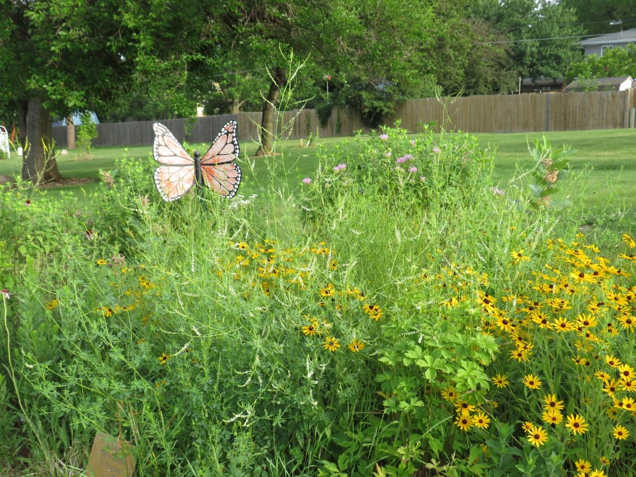 Pollinator Garden at Brownie Park