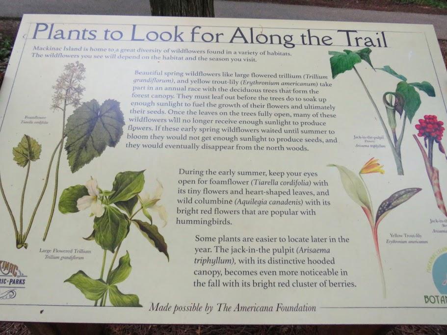 Mackinac Island Botanical Trail Signage by FlowerChick.com