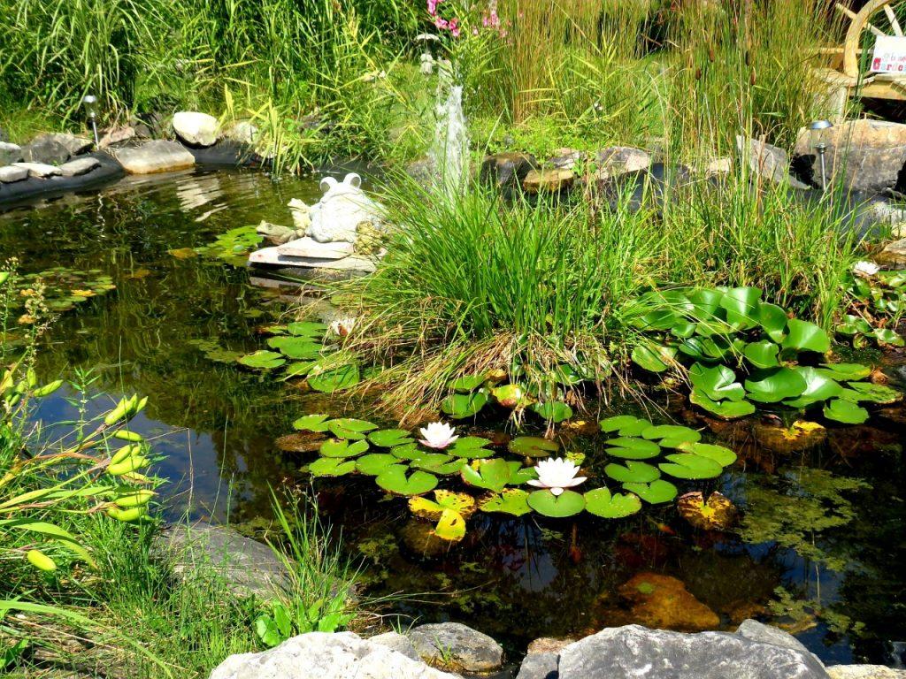 DeTour Botanical Gardens by FlowerChick.com