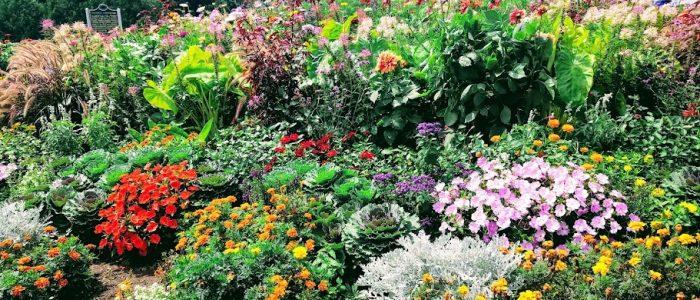 The Grand Hotel Gardens by FlowerChick.com