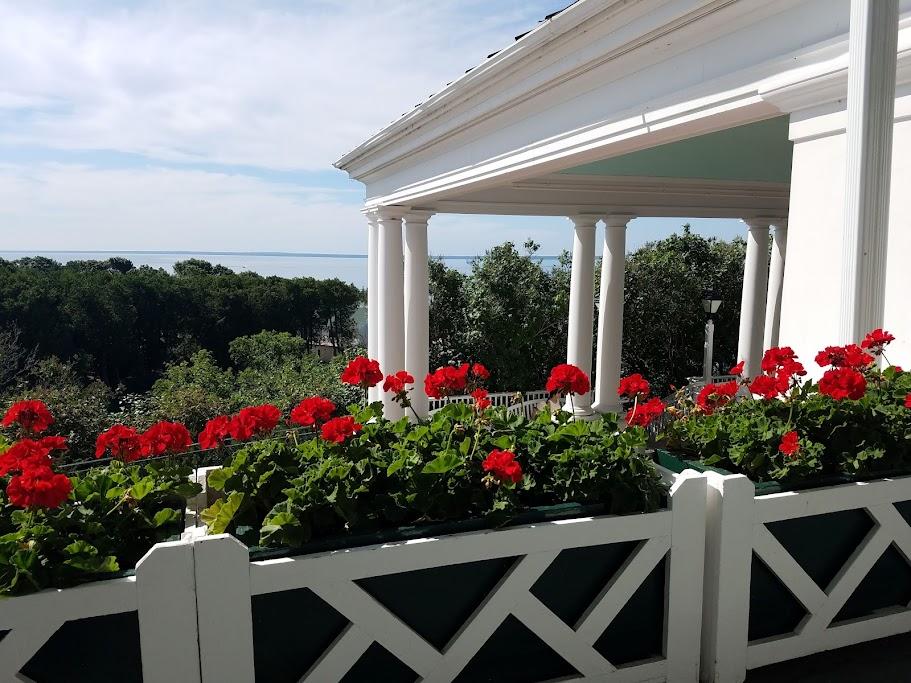 The Grand Hotel Red Geraniums by FlowerChick.com
