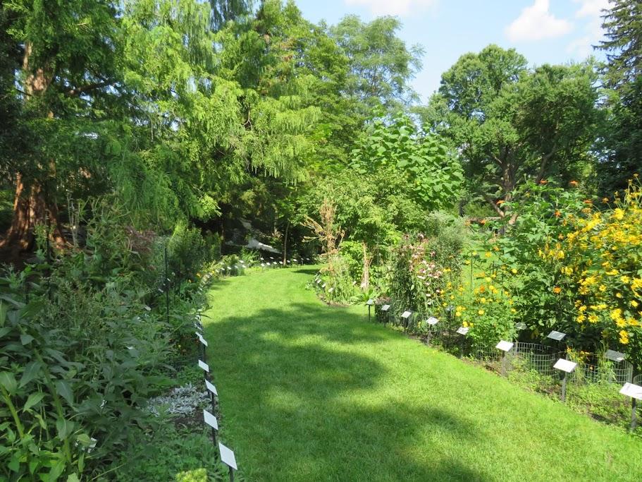 Beal Botanical Garden Lansing